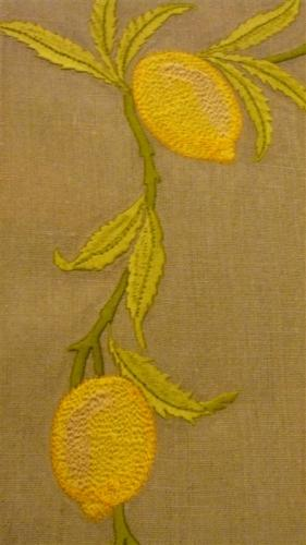 branche-de-citrons-moyenne.jpg