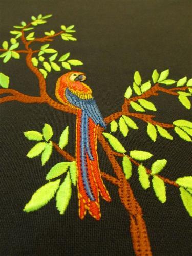 perroquet-reusu-moyenne-1.jpg