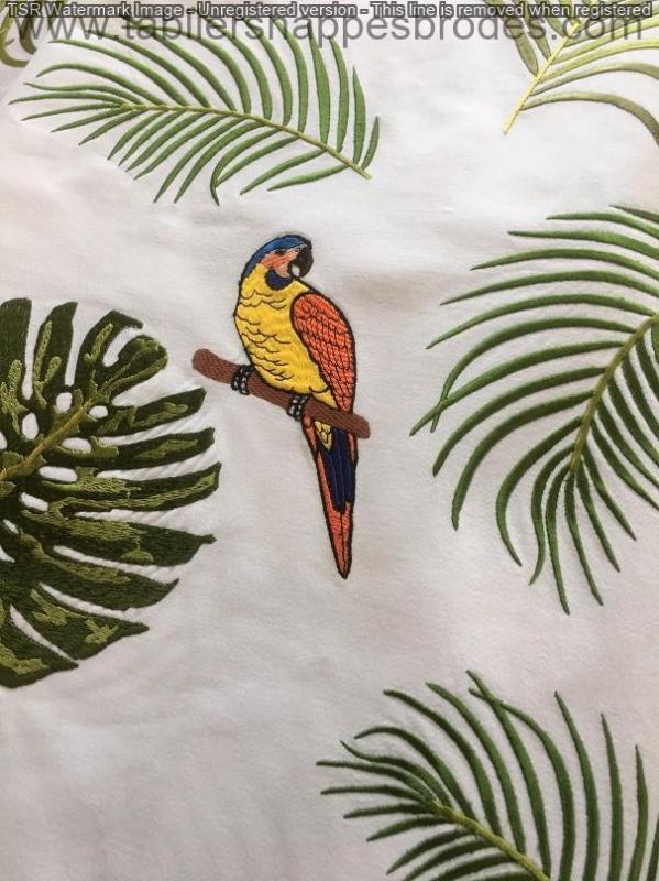 Oiseau un ok